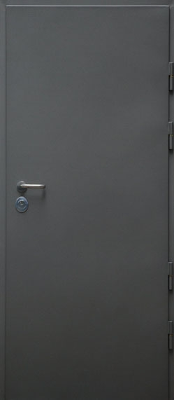Drzwi przeciwpożarowe DC3.1 PP60
